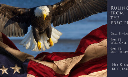 CONGRESS—PROVE THE PROTESTERS WRONG! DON'T DIVIDE THE EAGLE